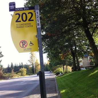 Photo of Bus Stop Route 202 in Lakewood