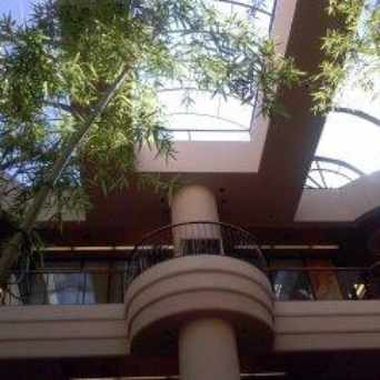 Photo of The Atrium, Walnut Creek in Walnut Creek