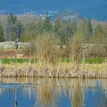 Photo of Colony Farm in Port Coquitlam