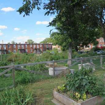 Photo of Kingman Park-Rosedale Community Garden in Kingman Park, Washington D.C.