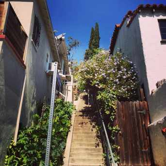 Photo of Music Box Stairs in Silver Lake, Los Angeles