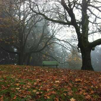 Photo of Mount Tabor City Park in Mt. Tabor, Portland