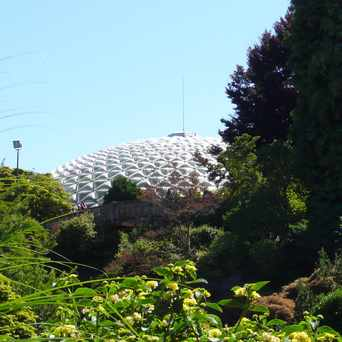 Photo of Bloedel Floral Conservatory in Riley Park, Vancouver