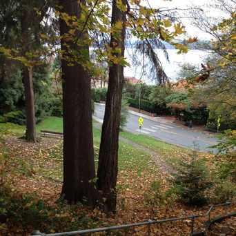 Photo of Viretta Park in Denny Blaine, Seattle