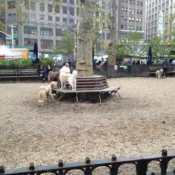 Photo of Dog Park in NoMad, New York