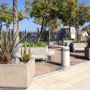 Photo of El Cajon Blvd. Transit Plaza North Side in Kensington, San Diego