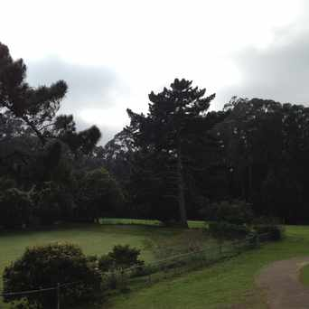 Photo of Top Of Stern Grove in Parkside, San Francisco