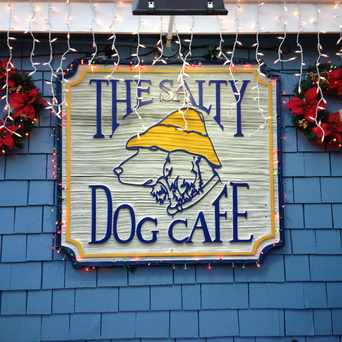 Photo of The Salty Dog Cafe in Hilton Head Island