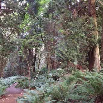 Photo of Ardmore Park in Northeast Bellevue, Bellevue