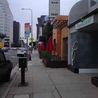 Photo of Wilshire blvd and bundy in Brentwood, Los Angeles