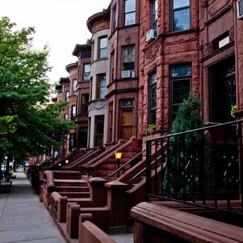 Photo of Bed-Stuy Brownstones in Bedford-Stuyvesant, New York
