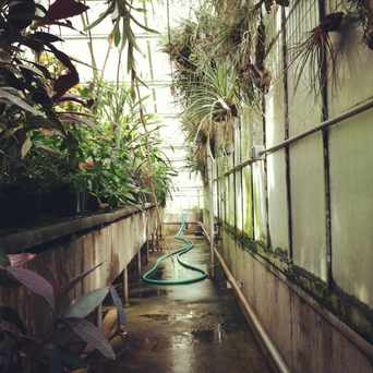 Photo of New Botany Greenhouse in University District, Seattle