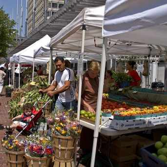 Photo of City Hall Farmers Market in Downtown, Boston