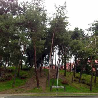 Photo of Charleson Park in Fairview, Vancouver