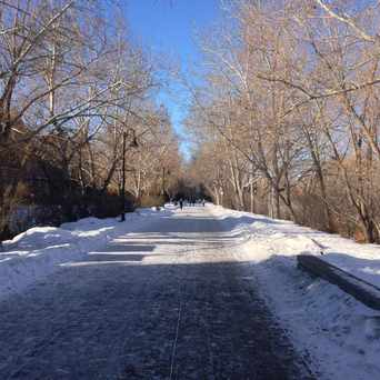 Photo of Eau Claire Park in Calgary