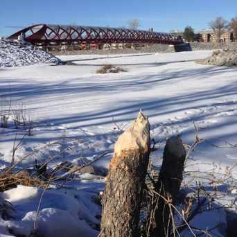 Photo of Peace Bridge Beaver Lodge in Eau Claire, Calgary