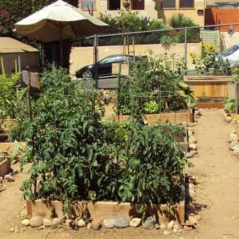Photo of Altadena Community Pocket Garden in North Park, San Diego