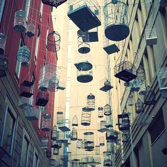 "Photo of ""Forgotten Songs"" - Angel Place in Sydney"