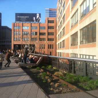 Photo of The High Line in Chelsea, New York