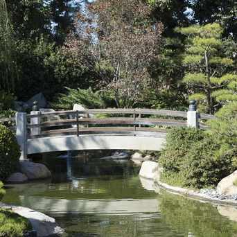 Photo of Earl Burns Miller Japanese Garden in Long Beach