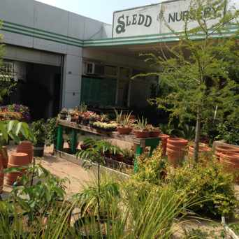 Photo of Sledd Nursery in Old West Austin, Austin