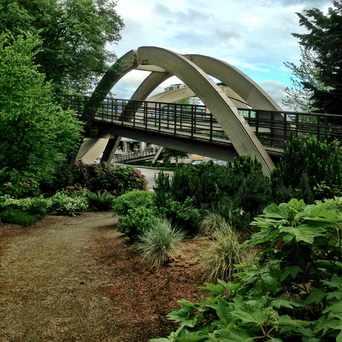 Photo of Pedestrian Bridge in Northwest Bellevue, Bellevue