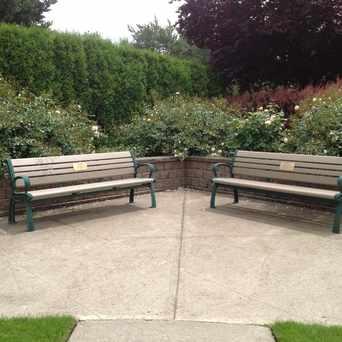 Photo of Sara Hite Rose Garden in Milwaukie
