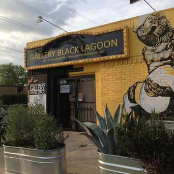 Photo of Gallery Black Lagoon in Hyde Park, Austin