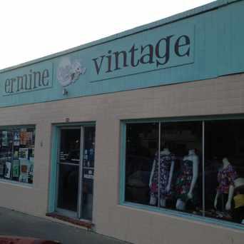 Photo of Ermine Vintage in North Loop, Austin