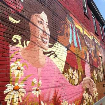 Photo of Cedarvile Street Mural in Bloomfield, Pittsburgh