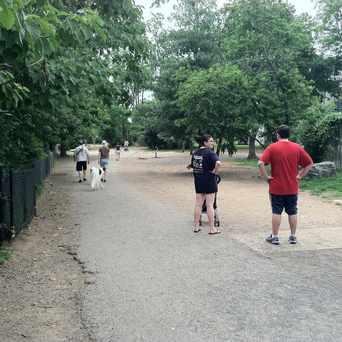 Photo of Shirlington Dog Park in Fairlington - Shirlington, Arlington