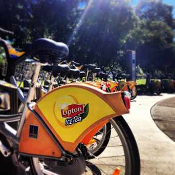 Photo of Guyatt Park in St Lucia, Brisbane
