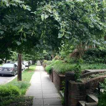Photo of Typical Neighborhood Scene in Glover Park, Washington D.C.