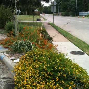 Photo of N. Polk St Beautification Project in Dallas