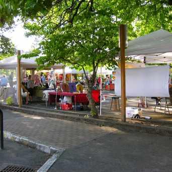 Photo of Milwaukie First Friday Market in Milwaukie