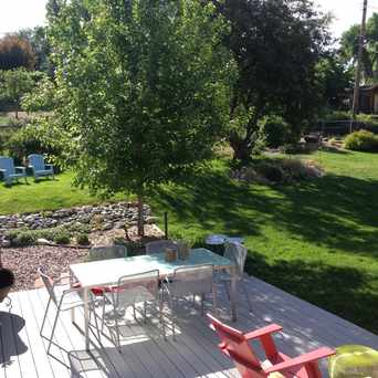 Photo of Back yard! in Wheat Ridge