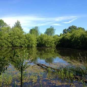 Photo of Scenic Pond in Redmond