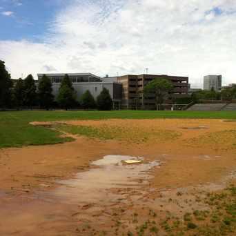 Photo of WM E Carter Baseball Fields in Lower Roxbury, Boston