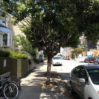 Photo of The Wishing Tree in Noe Valley, San Francisco