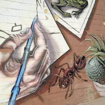 Photo of Wall Art in El Cerrito, San Diego