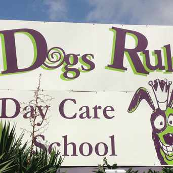 Photo of Dogs Rule Day Care & School in Memphis
