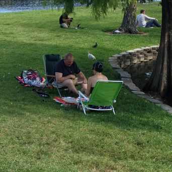 Photo of Lake Eola Park in South Eola, Orlando