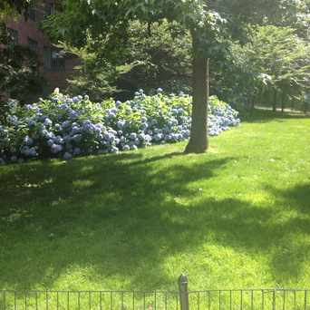 Photo of Stuyvesant Town in Stuyvesant Town - Peter Cooper Village, New York