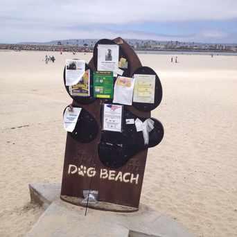 Photo of Ocean Beach Dog Beach in San Diego