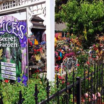 Photo of Alice's Secret Garden in Denver