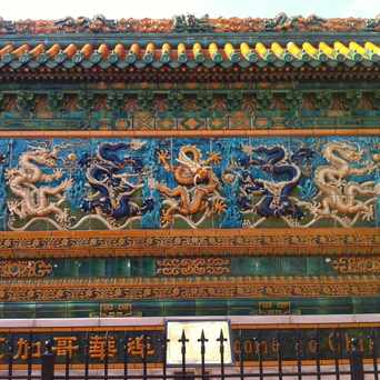 Photo of Nine Dragon Wall in Armour Square, Chicago
