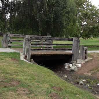 Photo of #Delthorne Romance Bridge! in Torrance