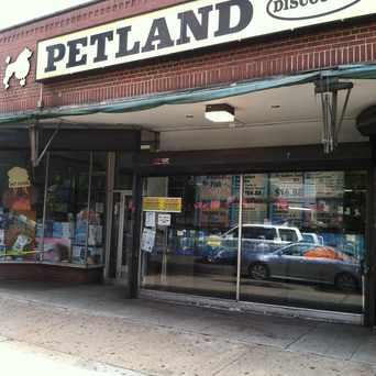 Photo of Petland Discounts in Kingsbridge, New York