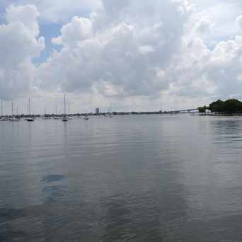 Photo of Island Park in Sarasota