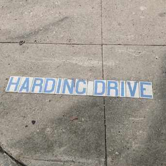 Photo of Harding Drive in City Park, New Orleans